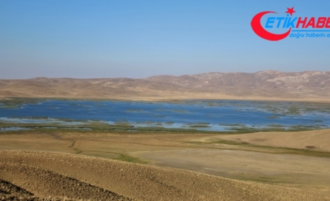 Dünyanın en eski göleti kısmen kurudu
