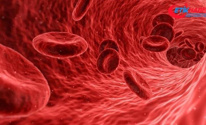 Enfeksiyon kaynaklı ölümlerin yüzde 60'ından sepsis sorumlu