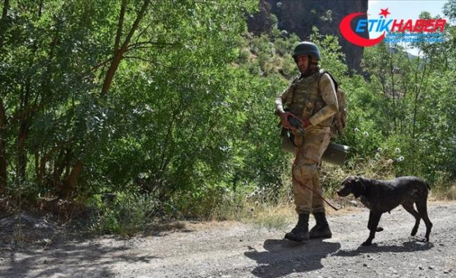 Van'da terör örgütü PKK'ya ait toprağa gömülü el yapımı patlayıcı bulundu
