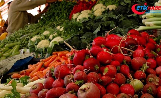 'Ata Tohum'larıyla üretilen kışlık sebzeler reyonlarda yerini alacak