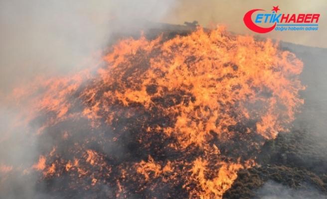İstanbul'da orman yangınlarına ilişkin 3 PKK'lı gözaltına alındı