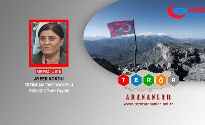 Terör örgütü PKK'nın kadın yapılanması sorumlusuna nokta atışı