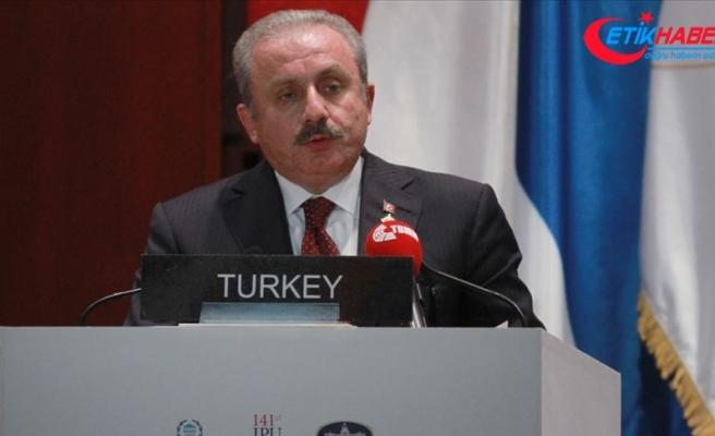 'Türkiye Suriye'de kalıcı barışın sağlanması için her türlü girişimin içinde'