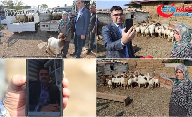 Bakan Pakdemirli, hırsızlık mağduru besici çifte 39 koyun hediye etti