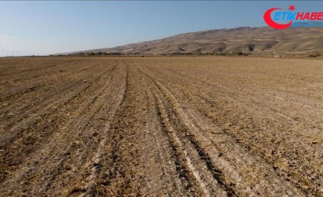 Van'da Tarıma Dayalı İhtisas OSB kurulacak