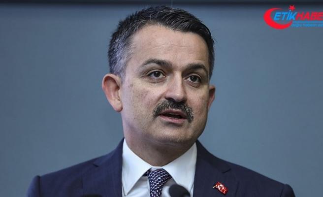 Tarım ve Orman Bakanı Pakdemirli: Hayvan ithalatının sonlandırılması konusunda kararlıyız