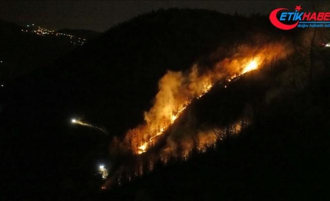 Trabzon'daki örtü yangınları tamamen söndürüldü