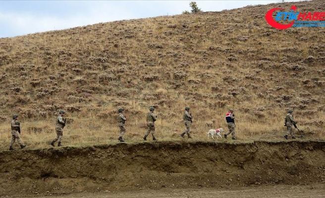Jandarmanın ikna ettiği sorumlu düzeydeki PKK'lı terörist teslim oldu