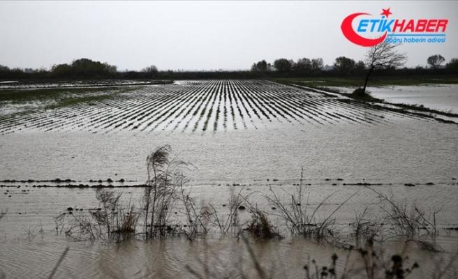 Mersin ve Antalya'da sağanak nedeniyle tarım arazileri sular altında kaldı