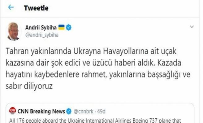 Ukrayna Büyükelçisinden uçak kazasına ilişkin açıklama