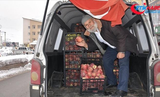 Yetiştirdiği elmaları 1630 kilometre yol katederek Mehmetçiğe götürdü