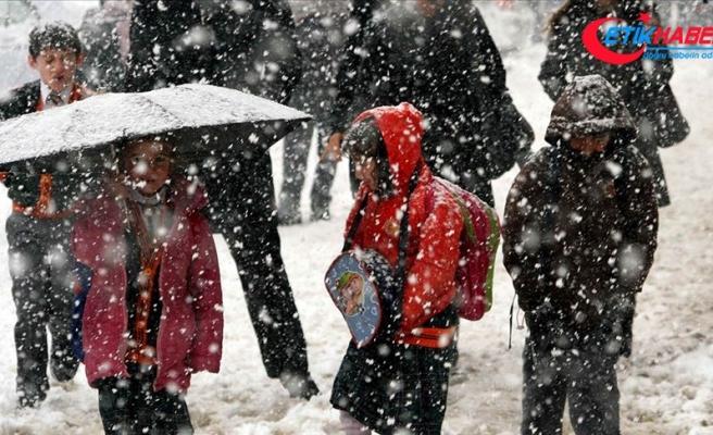 Ağrı ve Van'da eğitime kar tatili