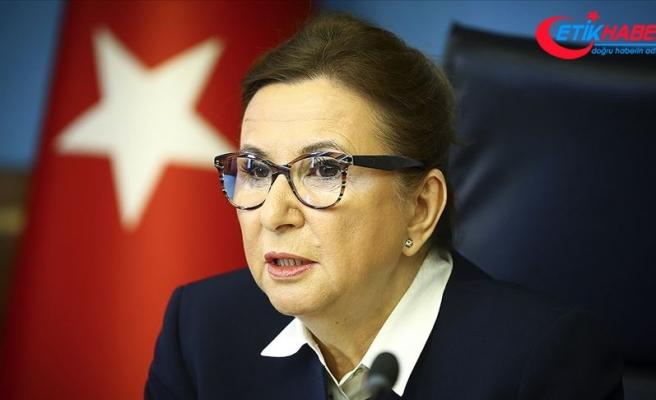 Bakan Pekcan uluslararası ticarette yük taşımacılığına ilişkin alınan yeni kararları açıkladı