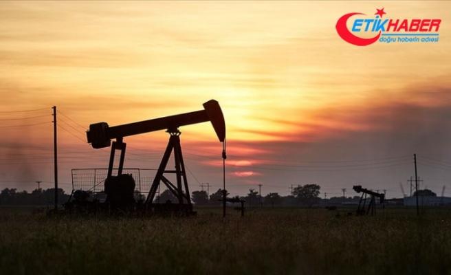 Brent petrolün varili 22,22 dolar