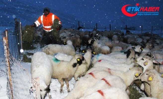 Amasya'da kar nedeniyle yaylada mahsur kalan aile kurtarıldı