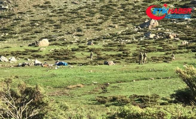 Siirt'te 2 teröristin etkisiz hale getirildiği operasyon sürüyor