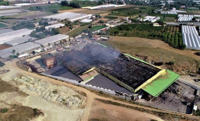 Antalya'da alevlerin gökyüzünü aydınlattığı büyük yangında zarar yaklaşık 80 milyon lira