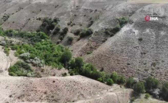 HÜRKUŞ'un düştüğü alan havadan görüntülendi