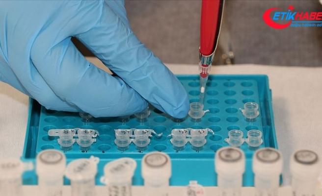 Bazı kanser türlerini semptomlar görülmeden birkaç yıl önce tespit eden test geliştirildi