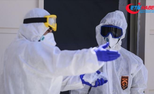 Dünya genelinde Kovid-19 tespit edilen kişi sayısı 11 milyon 388 bini geçti