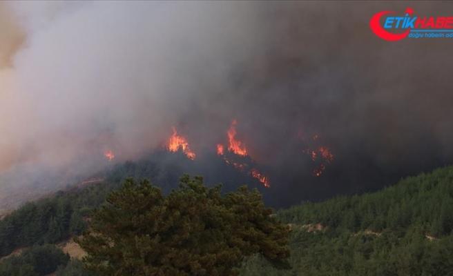Adana'daki orman yangınında 60 ev tahliye edildi