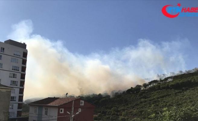 Maltepe'de ormanlık alanda yangın