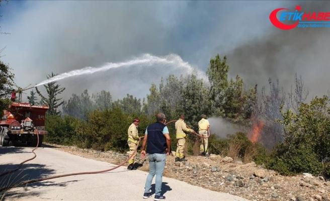 Osmaniye'de çıkan orman yangınına havadan ve karadan müdahale ediliyor