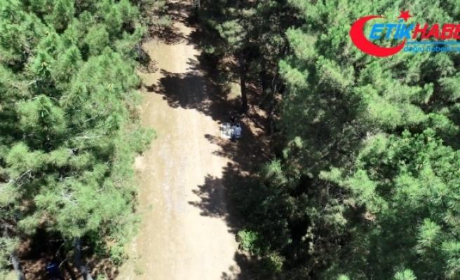 Pendik'te Aydos Ormanında dronelu mangal denetimi