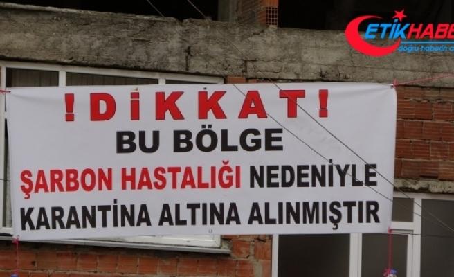 Trabzon'da şarbon vakasında 1 mahalle karantinaya alındı