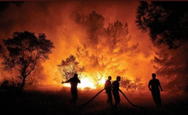 """Bakan Pakdemirli: """"Bugün başlayan 11 orman yangınının 10'unu kontrol altına aldık"""""""
