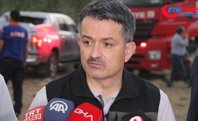 Pakdemirli: Eğirdir ve Manavgat'taki yangınlar söndürüldü, Kahramanmaraş, Kanlıca ve Samandağ'da yangınımız sürüyor
