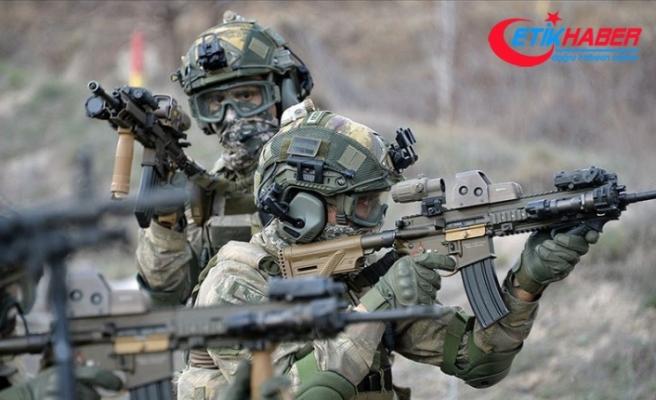 Güvenlik güçleri terör örgütü YPG/PKK'ya ekimde ağır darbe vurdu