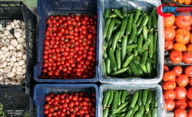 Türkiye'nin yaş meyve ve sebze ihracatında ekim ayında yüzde 18 artış