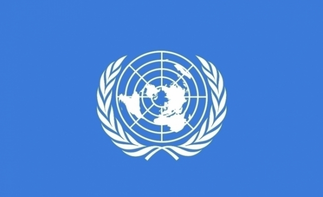 """BM 5 özel raportörü: """"Fransa'nın güvenlik yasa tasarısı, uluslararası insan hakları hukukuna aykırı"""""""