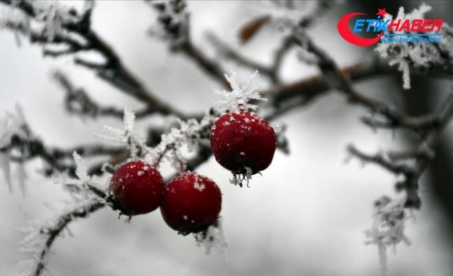 Doğu Anadolu'da 4 il için kar uyarısı
