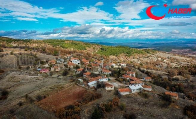 Salgın öncesi 4 kişinin yaşadığı dağ köyünün nüfusu 10 katına çıktı