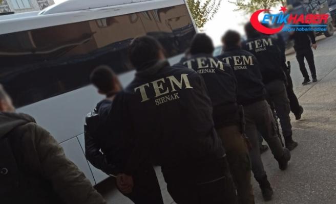 Şırnak'ta terör örgütü PKK'ya yönelik operasyon: 6 gözaltı