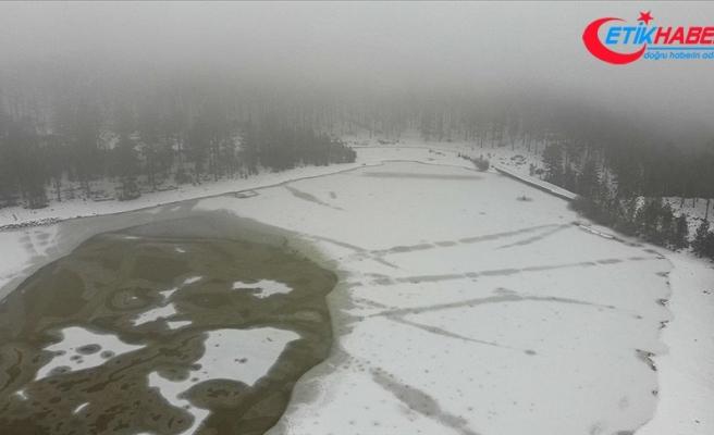 Köyceğiz'deki Gökçeova Göleti buz tuttu