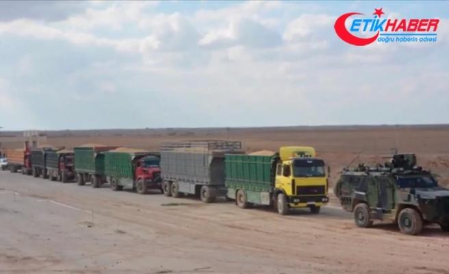 Barış Pınarı Harekatı'yla PKK/YPG'den kurtarılan köyün silolarındaki tahıl bölge halkına dağıtılıyor