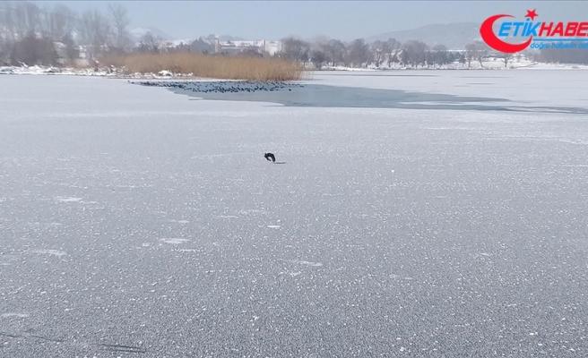 Bolu'da aşırı soğuk yüzünden çeşmeler dondu Yeniçağa Gölü buz tuttu