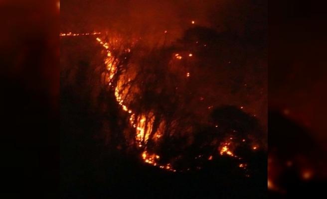 Japonya'da 3 gündür süren yangında, 50 hektarlık alan kül oldu