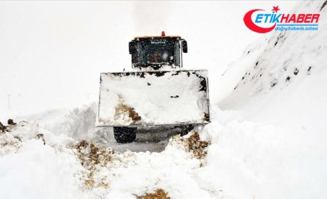 Türkiye'de son yağışların ardından kar kalınlıkları ortalama insan boyunu aştı