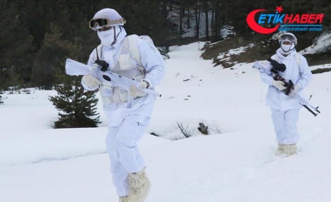 Güvenlik güçleri şubat ayında 126 PKK'lı teröristi etkisiz hale getirdi