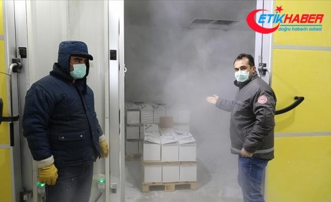 Türkiye'ye getirilen 2,8 milyon doz BioNTech aşısı Sağlık Bakanlığı depolarına yerleştirildi
