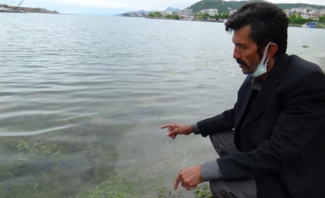 Marmara Denizi'ndeki müsilaj Karadenizli balıkçıları endişelendiriyor