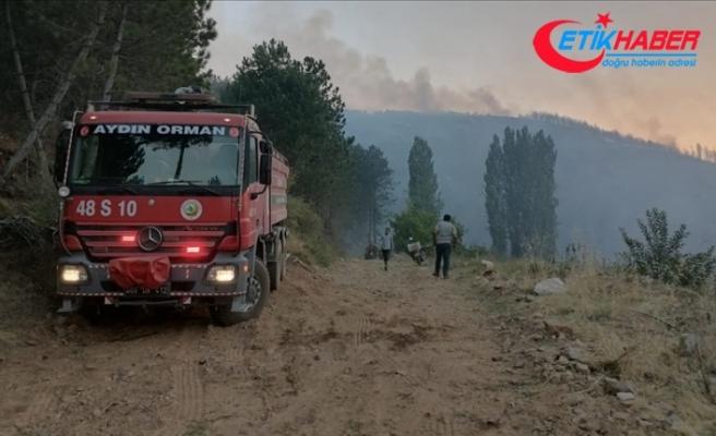 Aydın'ın Karacasu ilçesindeki orman yangınına müdahale sürüyor