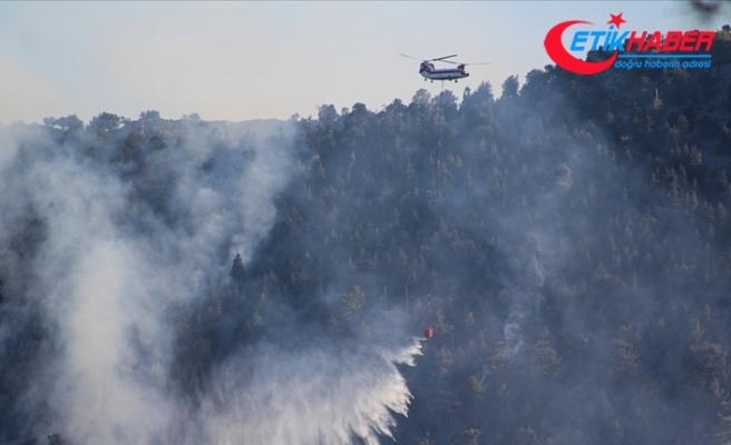 Son 8 günde çıkan 174 yangının 160'ı kontrol alındı, 14'ü devam ediyor