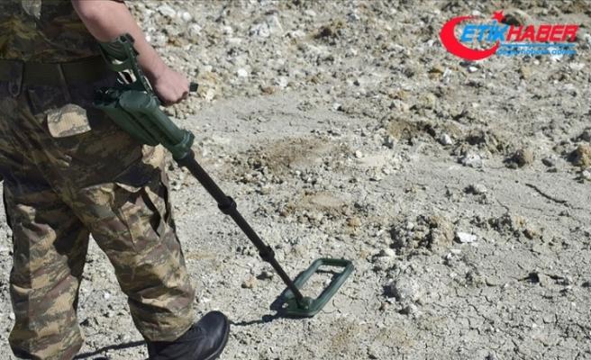 Türkiye'nin en doğusundaki 80 bin anti personel mayını temizlenecek