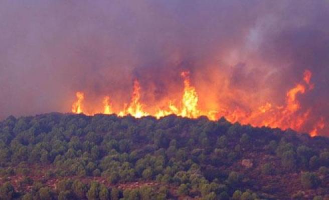 İzmir'deki makilik ve orman yangını söndürme çalışmaları devam ediyor