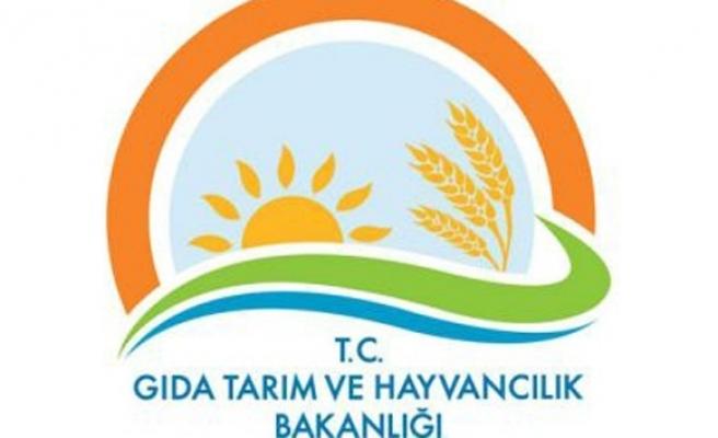 Gıda Tarım ve Hayvancılık Bakanlığında bin 379 kişi hakkında işlem yapıldı